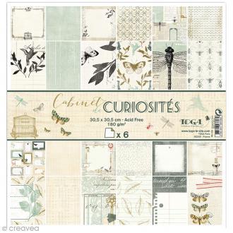 Papier scrapbooking Recto/Verso Cabinet de curiosités - Set de 6 feuilles - 30,5 x 30,5 cm