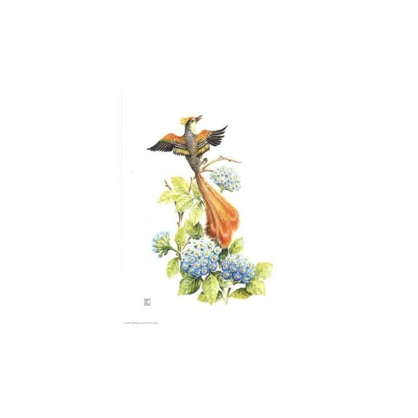Image 3D - venezia 99 - 24x30 - oiseau sur fleur bleue - Photo n°1