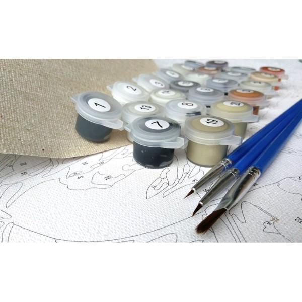 1pc Chat Noir Et Blanc des Fleurs d'Automne Animal de compagnie Acrylique Bricolage Peinture Par Num - Photo n°3