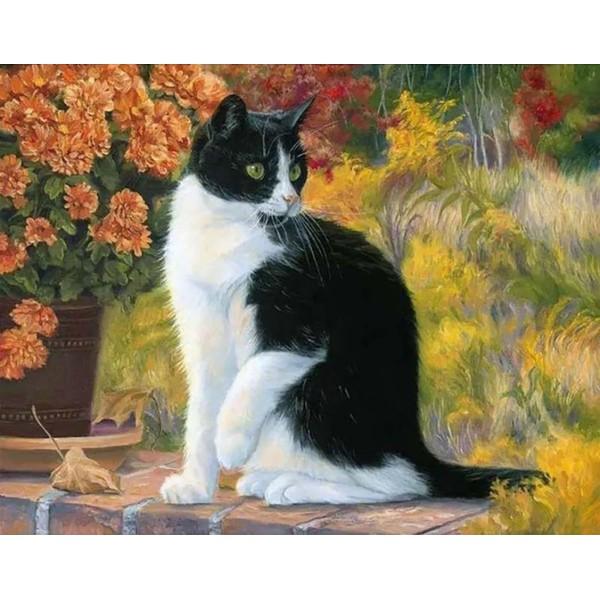 1pc Chat Noir Et Blanc des Fleurs d'Automne Animal de compagnie Acrylique Bricolage Peinture Par Num - Photo n°1