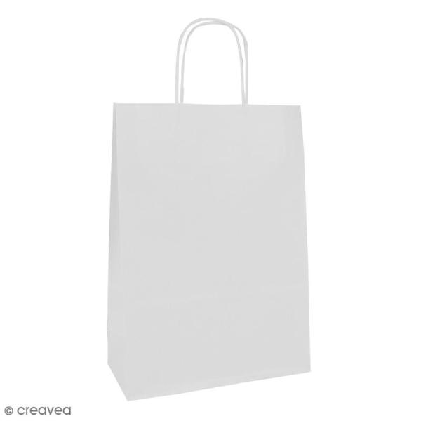 Sac en papier 22 x 29 x 10 cm - Kraft blanc - 25 pcs - Photo n°1