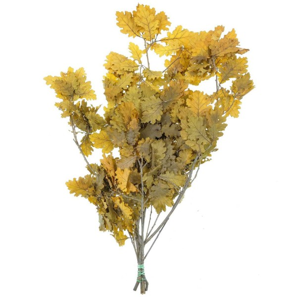 Feuillage de chêne jaune stabilisé - 60 à 70 cm - Photo n°2