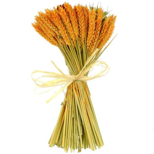 Bouquet de fleurs séchées composé orange - 30 cm - Photo n°1