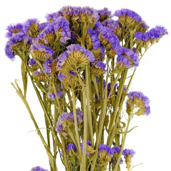 Bouquet de fleurs séchées statice sinuata violet - 45 cm - Photo n°3