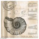 Serviette en papier - Mer coquillage - Photo n°1