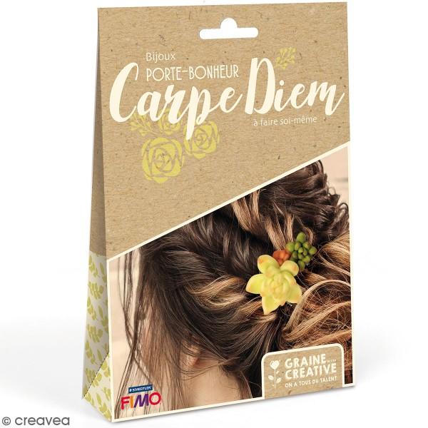 Kit bijoux porte-bonheur - Peigne à cheveux Fimo - Photo n°1