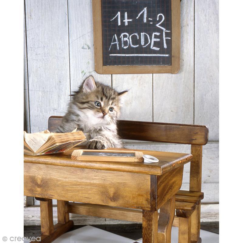 Image 3D Animaux - Chaton sur banc d'école - 24 x 30 cm - Photo n°1