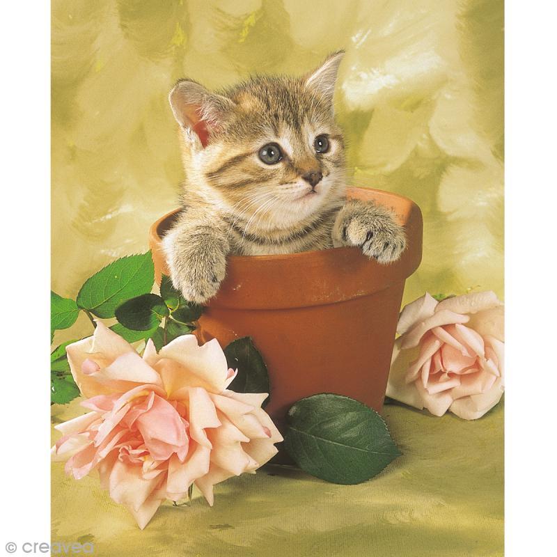 Image 3D Animaux - Chaton et pot de fleur - 24 x 30 cm - Photo n°1