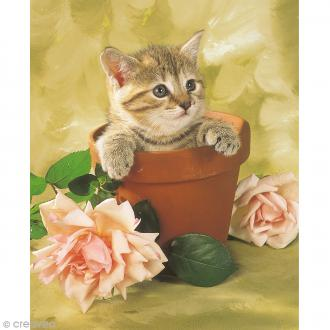 Image 3D Animaux - Chaton et pot de fleur - 24 x 30 cm