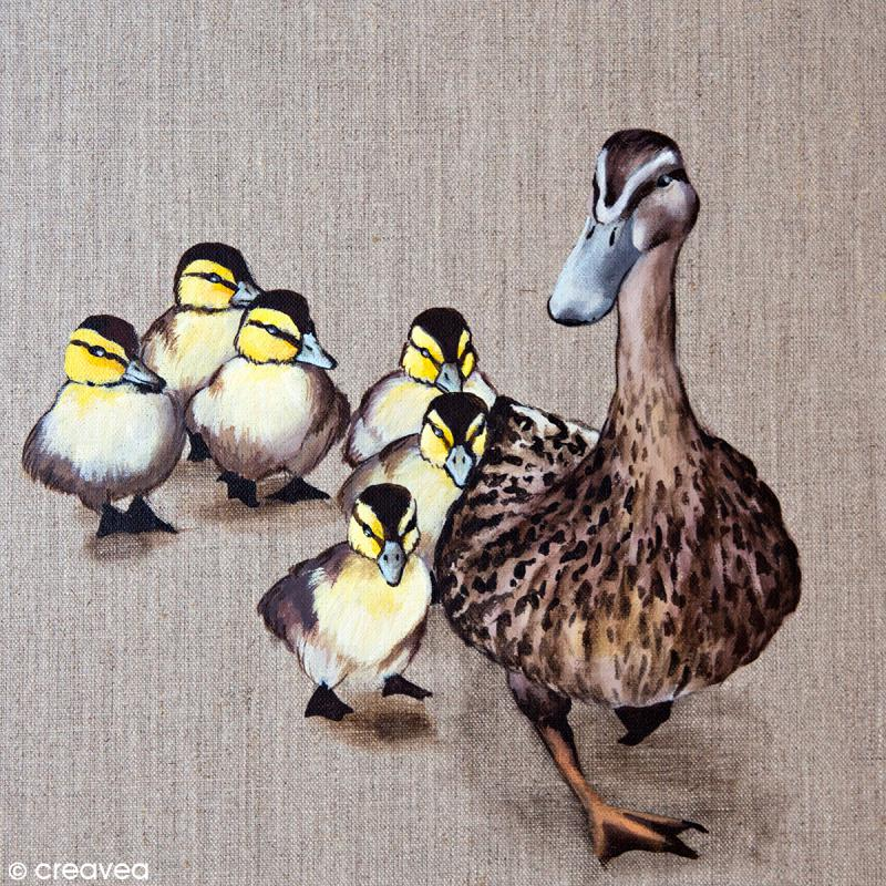 Image 3D Animaux - Canards - 30 x 30 cm - Photo n°1