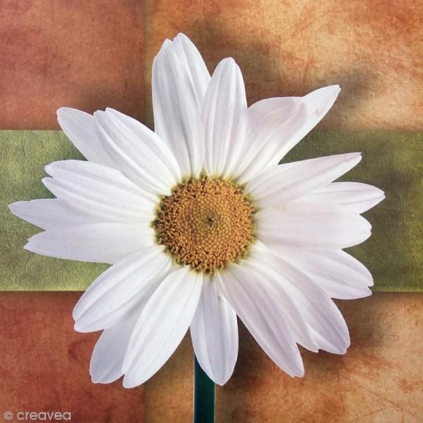 Image 3D Fleur - Marguerite - 30 x 30 cm - Photo n°1