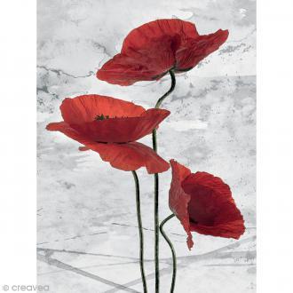 Image 3D Fleur - Coquelicot fond gris - 30 x 40 cm