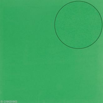 Papier scrapbooking Bazzill 30 x 30 cm - Mousse Adhésive - Vert