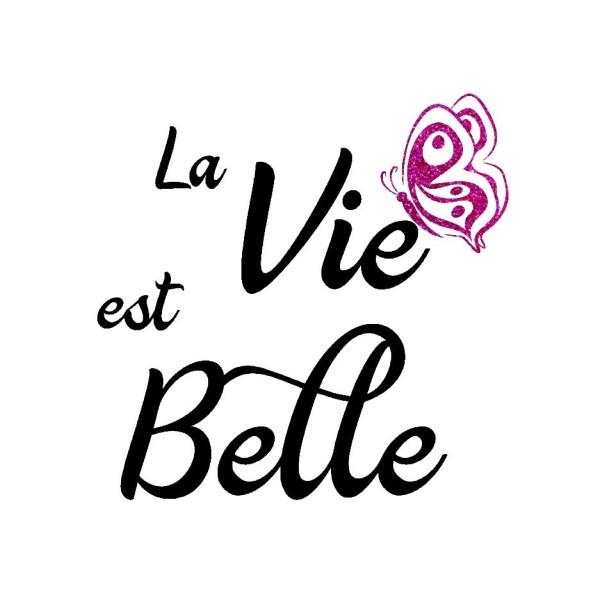 Flex Thermocollant La Vie est Belle Couleurs - Photo n°1