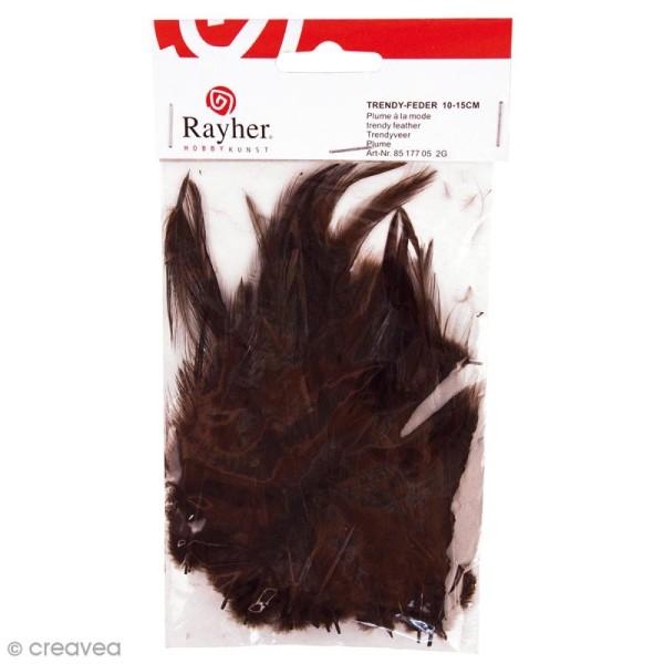 Plumes à la mode Marron brun foncé 10 cm - 2 g - Photo n°1
