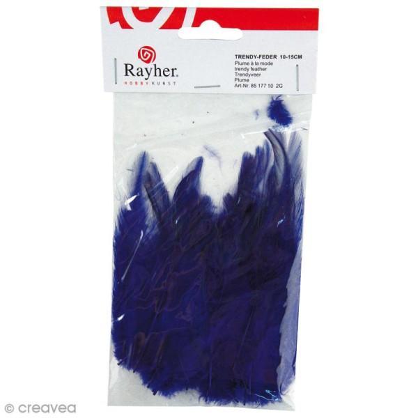 Plumes à la mode - Bleu foncé - 2 g - Photo n°1