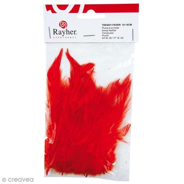 Plumes à la mode Rouge 10 cm - 2 g - Photo n°1