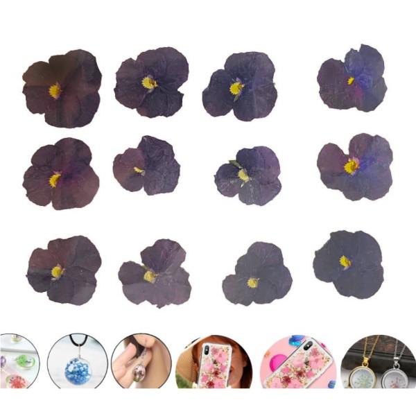 12pcs Violet Pansy Teint Pressé de Fleurs Séchées Plantes Sèches Époxy Résine Uv Pendentif Nail Art - Photo n°1