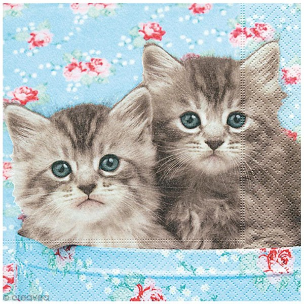 Serviette en papier - Chats - Photo n°1