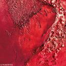 Powertex solidifiant tissu - Rouge (Edition limitée) - 1 kg - Photo n°4