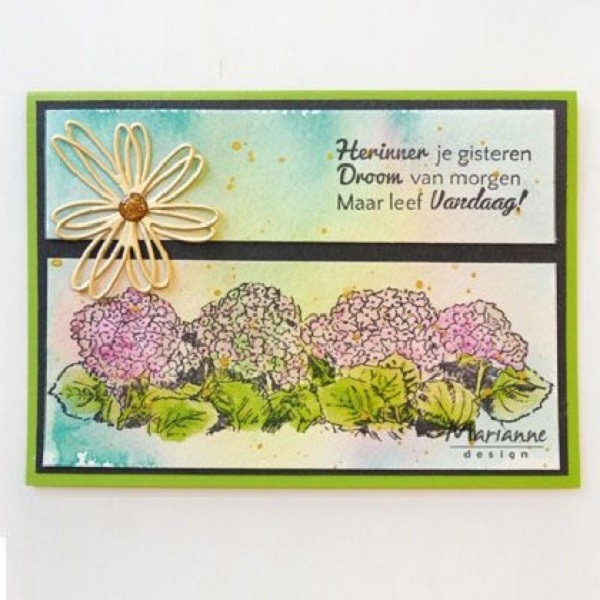 Tampon clear Marianne Design - Tiny's border - Hydrangea - Photo n°2