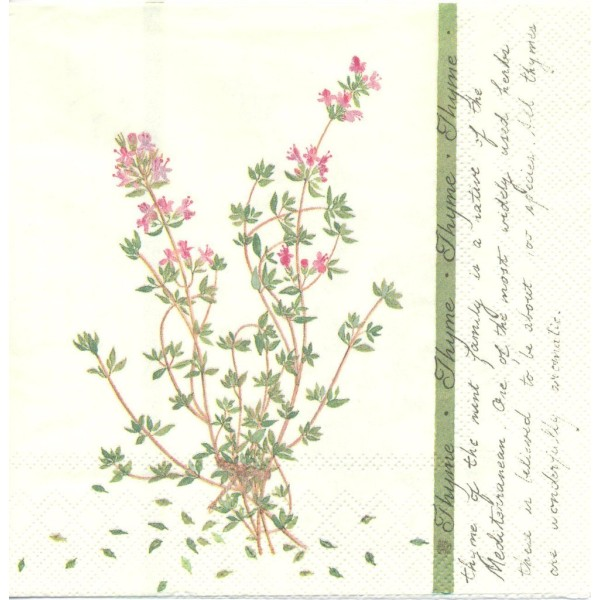 4 Serviettes en papier Herbes Thym Format Lunch Decoupage Decopatch L-469560 IHR - Photo n°1