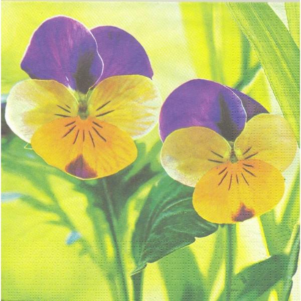 4 Serviettes en papier Pensées Fleurs Format Lunch Decoupage Decopatch 4709 PPD - Photo n°1
