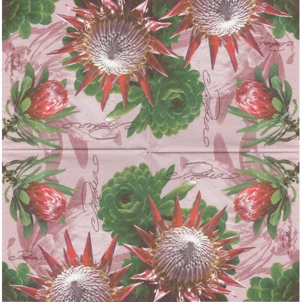4 Serviettes papier Fleur d'Afrique Protea Format Lunch Decoupage Decopatch Ti-Flair 367815 - Photo n°1