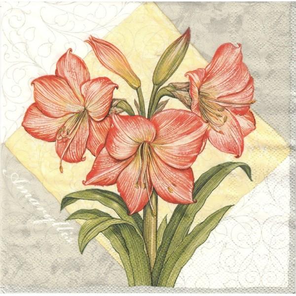 4 Serviettes en papier Fleurs Amaryllis Format Lunch Collage Decopatch SLOG-013303 Pol-Mak - Photo n°1