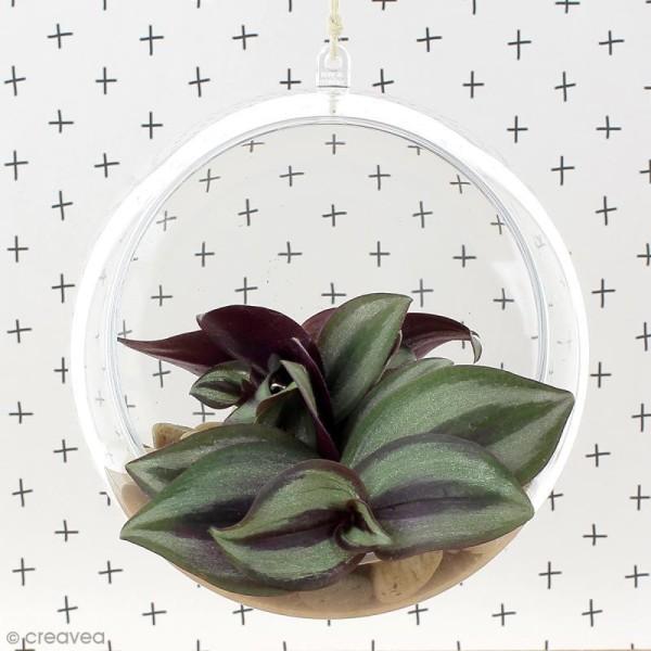 Boule ouverte en plastique transparent - 12 cm - Photo n°3