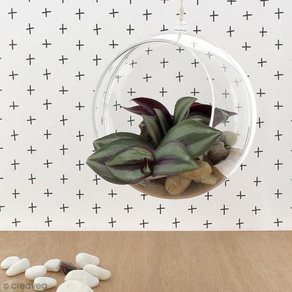 Boule ouverte en plastique transparent - 12 cm - Photo n°4