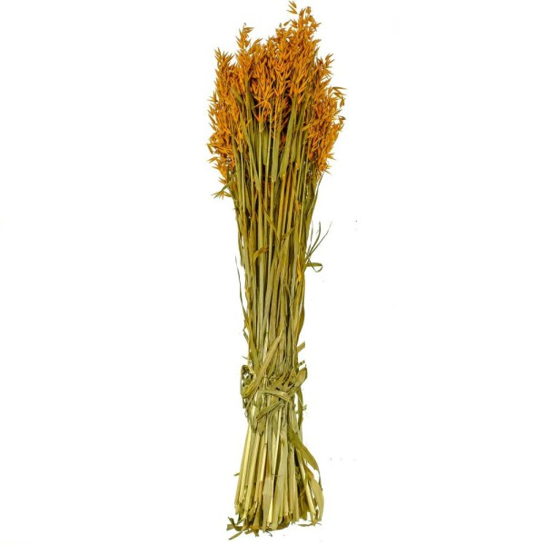 Bouquet fleurs séchées avoine orange - 70 cm - Photo n°1