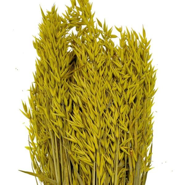Bouquet fleurs séchées avoine jaune - 70 cm - Photo n°3