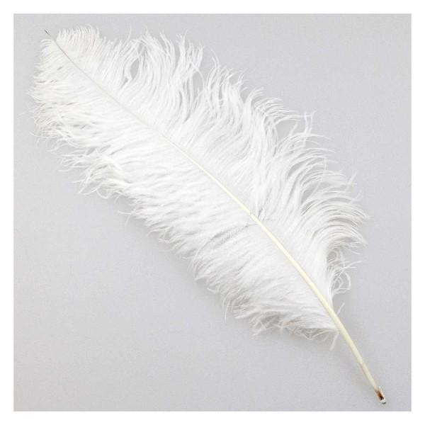 Plume blanche d'autruche - Taille 60 à 70 cm - Photo n°1