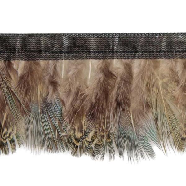Plumes amande de faisan commun bleutées - Frange 50 cm - Photo n°1