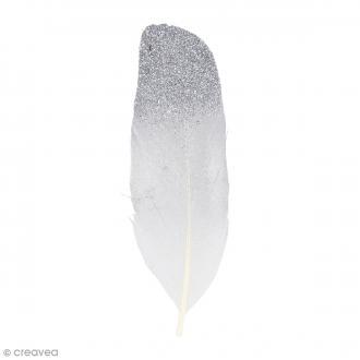 Plumes décoratives - Argenté - 12 cm - 6 pcs