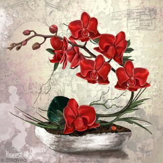 Image 3D - Compostion florale orchidées - 30 x 30 cm
