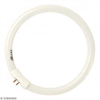 Ampoule circulaire de rechange pour loupe lumineuse Prym - 22 W - Pour modèle 610713