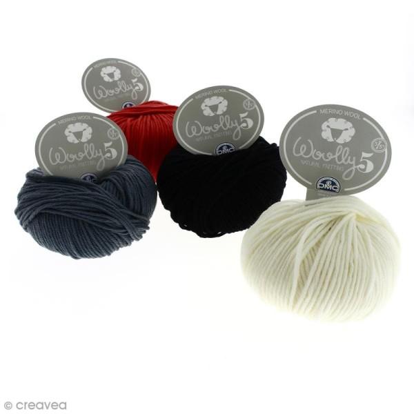 Laine DMC - Woolly 5 Merinos - 50 g - Photo n°1
