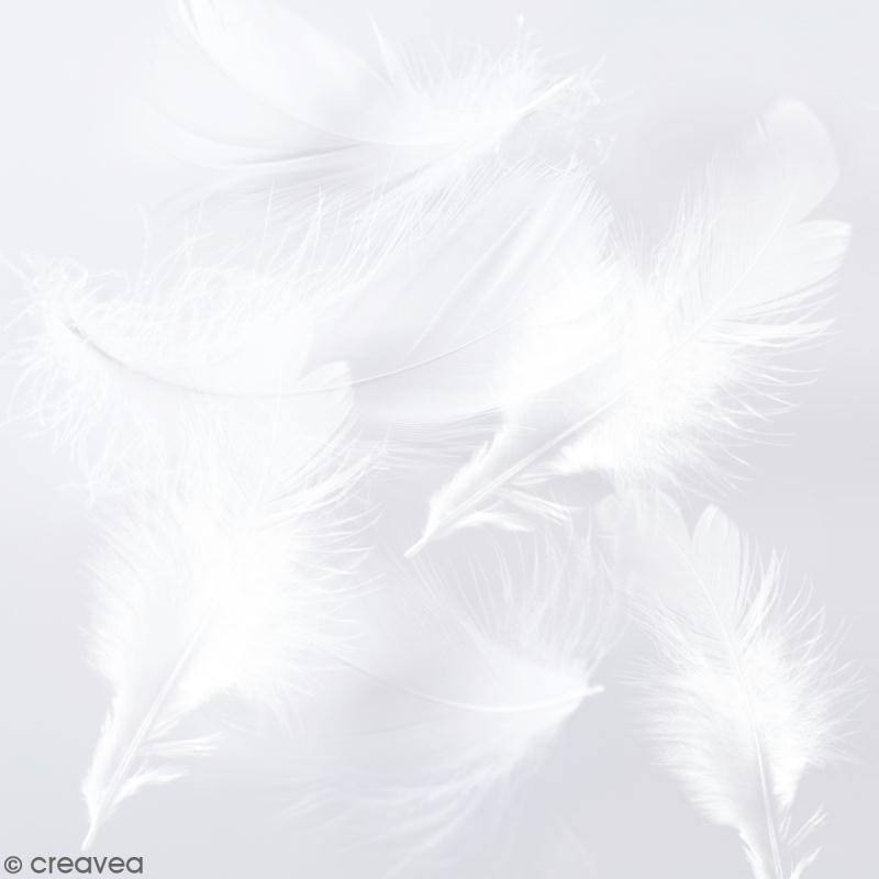 Plumes marabout - Blanches - 15 pcs - Photo n°1