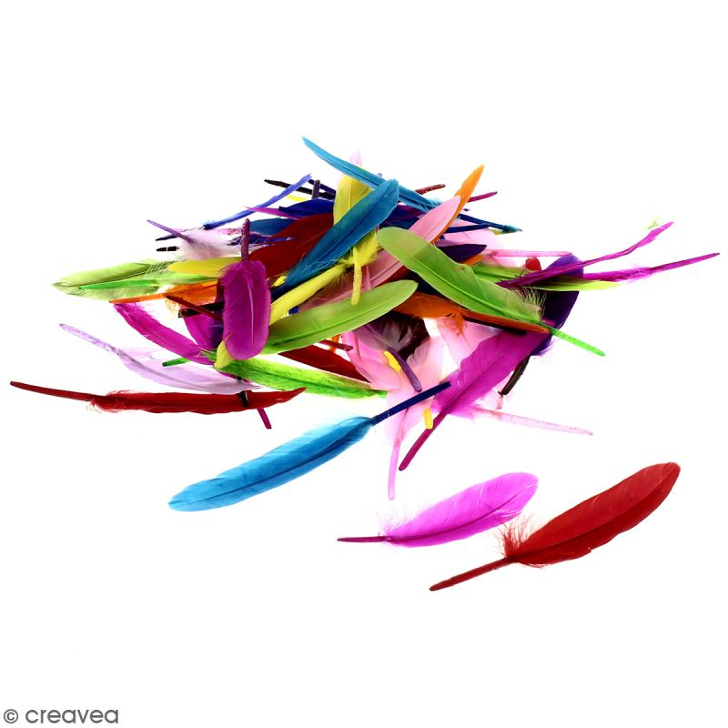 Plumes Indien - Multicolores - 50g - Photo n°1