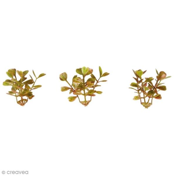 Plante artificielle - Minis branches de buis - Plastique - 4,5 cm - 12 pcs - Photo n°1