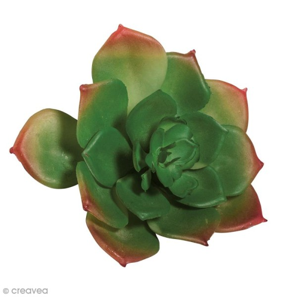 Plante artificielle - Echeveria vert - Plastique - 8,5 x 3,5 cm - Photo n°1