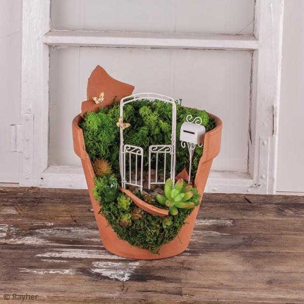 Mini plante artificielle - Crassula - Plastique - 2,5 x 6,5 cm - Photo n°2