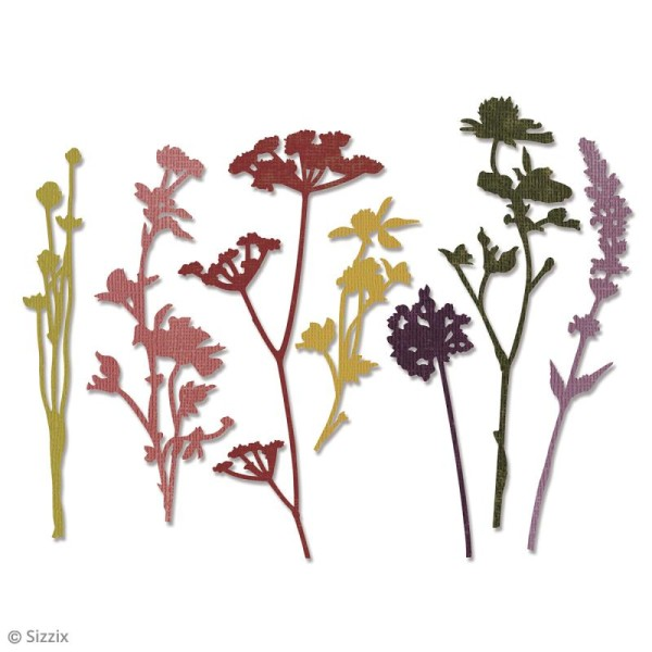 Matrice Sizzix Thinlits - Fleurs Sauvages - 7 pcs - Photo n°2