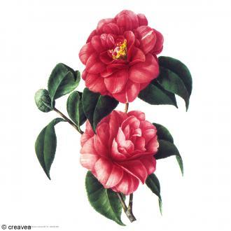 Image 3D Fleur - Fleurs rouges - 24 x 30 cm