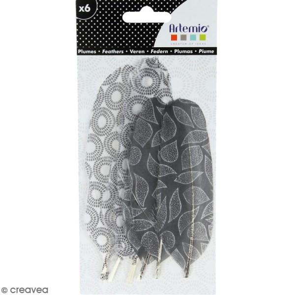 Plumes décoratives Black & White - 6 pcs - Photo n°1