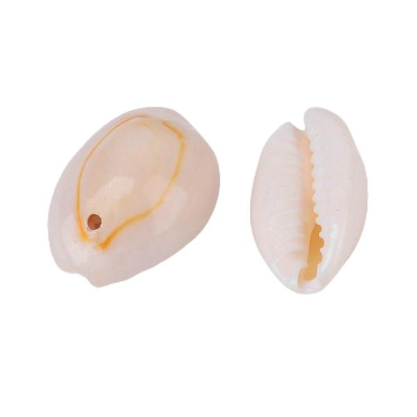 20pcs Blanc Crème, des Coquillages des coquillages Percés Naturel de Bijoux de Coquille de Mer, Fair - Photo n°1