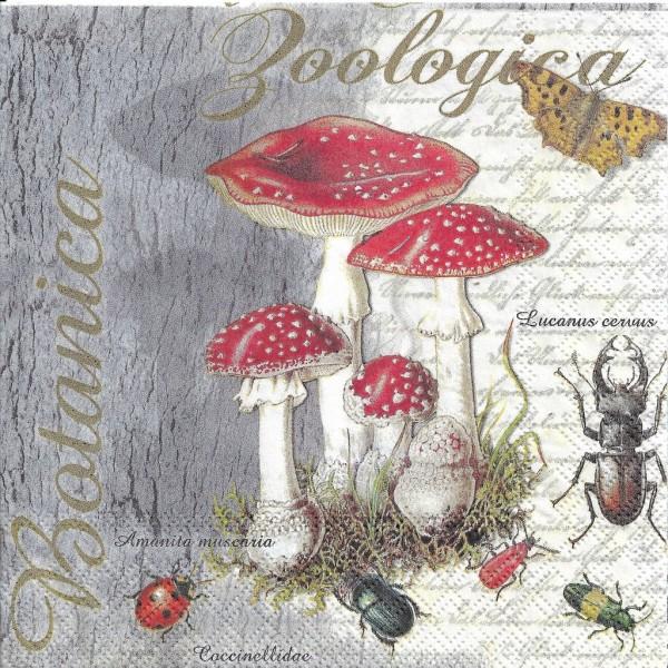 4 Serviettes en papier Insectes & Amanite tue-mouches Format Lunch Decoupage 13313675 Ambiente - Photo n°1