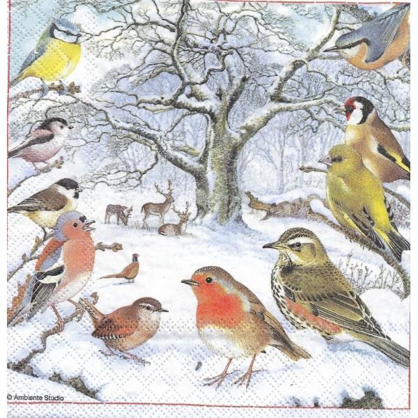 4 Serviettes en papier Réunion d'Oiseaux Format Lunch Decoupage Decopatch 33313875 Ambiente - Photo n°1